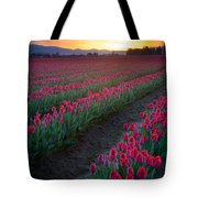 Skagit Valley Blazing Sunrise Tote Bag