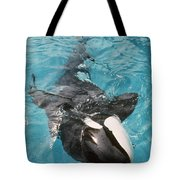 Skana Orca Vancouver Aquarium Pat Hathaway Photo1974 Tote Bag