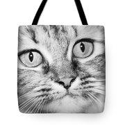 Skc 1498 Wide Eyed Tote Bag