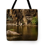 Skc 2964 The Rustic Rocks And Ripply Waters Tote Bag