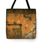 Skc 3277 Abstract By Age Tote Bag