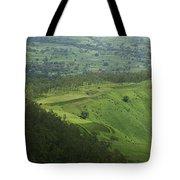 Skc 3566 The Gamut Of Green Tote Bag