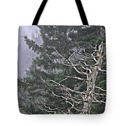 Skeletal Treescape Tote Bag