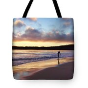 Skimboarder Sunset #2 Tote Bag