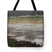 Skimmers On Assateague Tote Bag