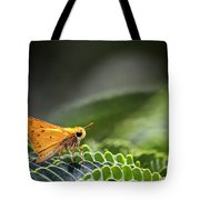 Skipper Butterfly On Mimosa Leaf Tote Bag