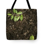 Skc 0091 Fallen And Separated Tote Bag