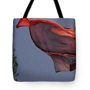 Skc 0958 Flying Saree Tote Bag