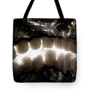 Skull Teeth Tote Bag