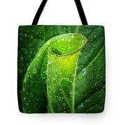 Skunk Cabbage Square Tote Bag