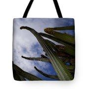 Sky Cactus Tote Bag
