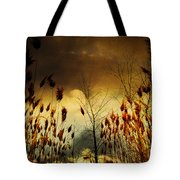 Autumn Lights Sky Colors  Tote Bag
