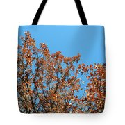 Sky Fall Tote Bag