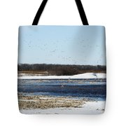 Sky Full Of Ducks Tote Bag