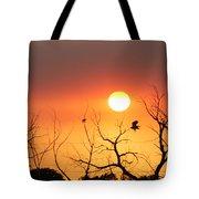 Sky Of Fire Tote Bag