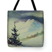 Sky Shadows And Spruce Tote Bag