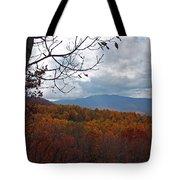 Skyline2584 Tote Bag