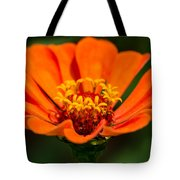Skyphos Of The Olympian Gods - Featured 3 Tote Bag