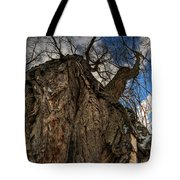 Sky's The Limit 02 Tote Bag