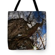 Sky's The Limit 0a Tote Bag