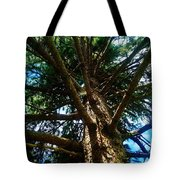 Skyward Spruce Tote Bag