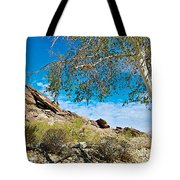 Slanted Rocks And Sycamore Tree  In Andreas Canyon In Indian Canyons-ca Tote Bag