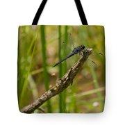 Slaty Skimmer Sunning Tote Bag