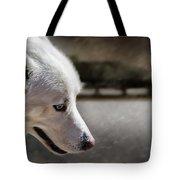 Sled Dog Tote Bag