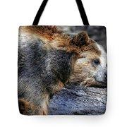Sleeping Bear Tote Bag
