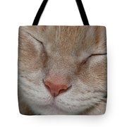 Sleeping Cat Face Closeup Tote Bag