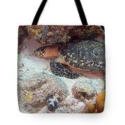 Sleeping Hawksbill Sea Turtle Tote Bag