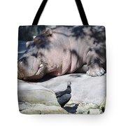 Sleeping Hippo Tote Bag