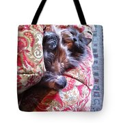 Sleeping In Today Tote Bag by Katie Cupcakes