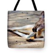 Sleeping Kangaroo Tote Bag