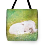 Sleeping Lamb Green Hue Tote Bag