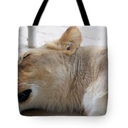 Sleeping Lioness Tote Bag