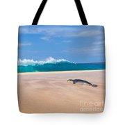 Sleeping Monk Seal At Papohaku Beach In Molokai Hawaii  Tote Bag