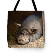 Sleeping Pig Tote Bag
