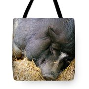 Sleeping Sow Tote Bag