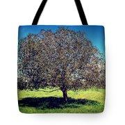 Sleeping Tree  Tote Bag