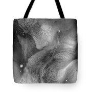 Sleeps And Dreams  Tote Bag