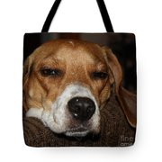 Sleepy Beagle Tote Bag