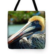 Sleepy Pelican Tote Bag