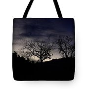 Sleepy Silhouette  Tote Bag