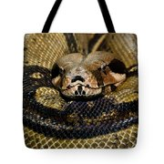Sleepy Snake Tote Bag