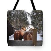 Sleigh Ride Dwn A Snowy Lane Tote Bag