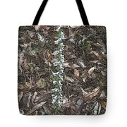 Slender Ladies Tresses Orchids Tote Bag