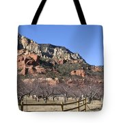 Slide Rock Tote Bag
