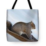 Sliding Squirrel Tote Bag