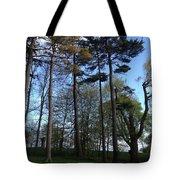 Slim Trees Tote Bag
